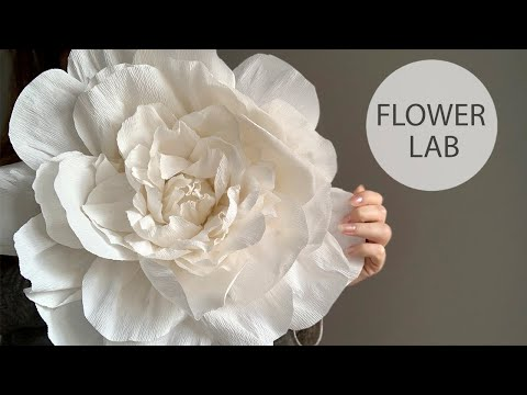 how-to-make-diy-giant-paper-rose-for-wedding