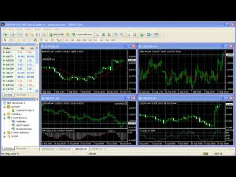 How to set up metatrader for forex trading