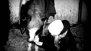 Goodbye, pony♥