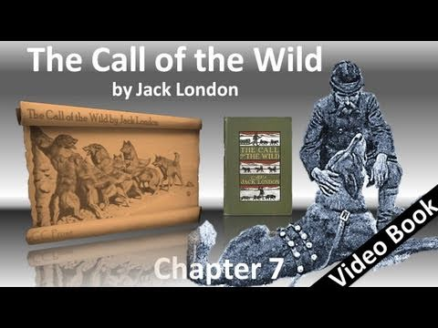 Chapter 07 - The Call of the Wild by Jack London - The Sounding of the Call