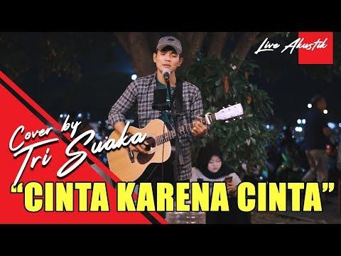 JUDIKA - CINTA KARENA CINTA (LIVE AKUSTIK) COVER BY TRI SUAKA