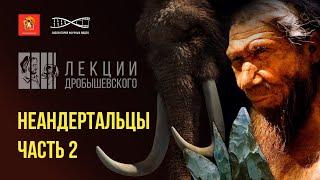 Культура, искусство и быт неандертальцев. Лекции Дробышевского. Неандертальцы (продолжение)