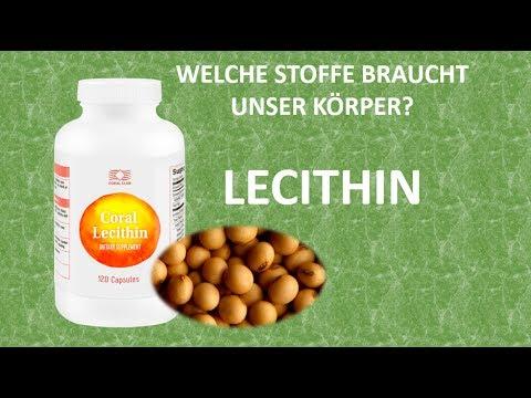 БАДы NSP : Лецитин НСП (Lecithin NSP)