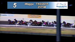 WAGGA - 07/03/2015 - Race 5 - RIVERINA ASBESTOS REMOVAL WAGGA PACERS CUP
