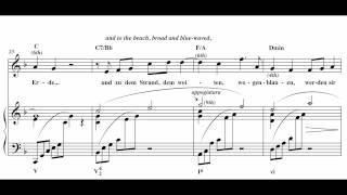 "Harmonic Analysis of Richard Strauss' ""Morgen!"""