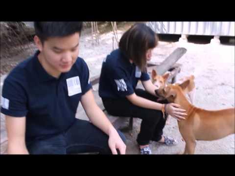 SPCA Docementary Final