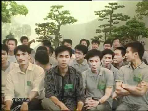 Tin TH Hà Nội - caycanhvietnam.com