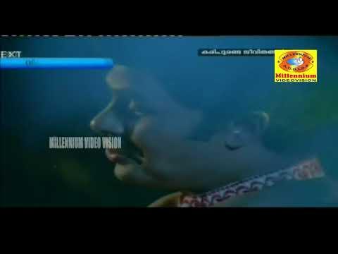 Kudamullakkaavile  |  Malayalam  Movie Song  |    Kari Puranda Jeevithangal |  P Jayachandran  |