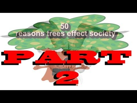 50 reasons trees affect society 26-50