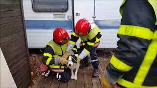 Formation initiale de sapeurs-pompiers professionnels