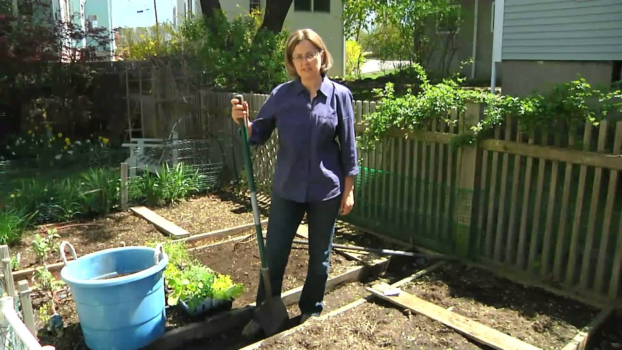 How to Sow Pumpkin Seeds : Planting & Gardening Vegetables