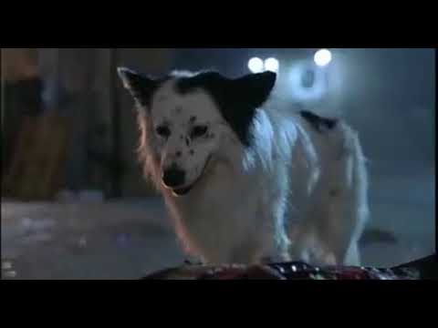 Alien Dog Scene | THE HIDDEN (1987)