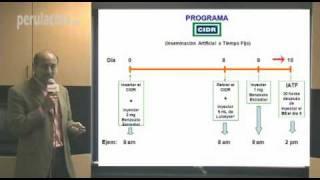 Cómo usar el CIDR