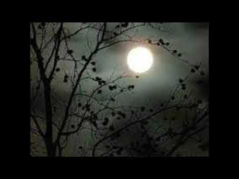 বাংলা কবিতা।  Adbhut andhar ek/অদ্ভুত আঁধার এক এসেছে। বাংলা কবিতা