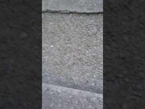 Fidget spinner vlog