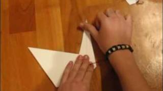How To Make 'prison Break' Origami Swan