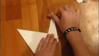 How To Make 'prison Break' Origami Swan