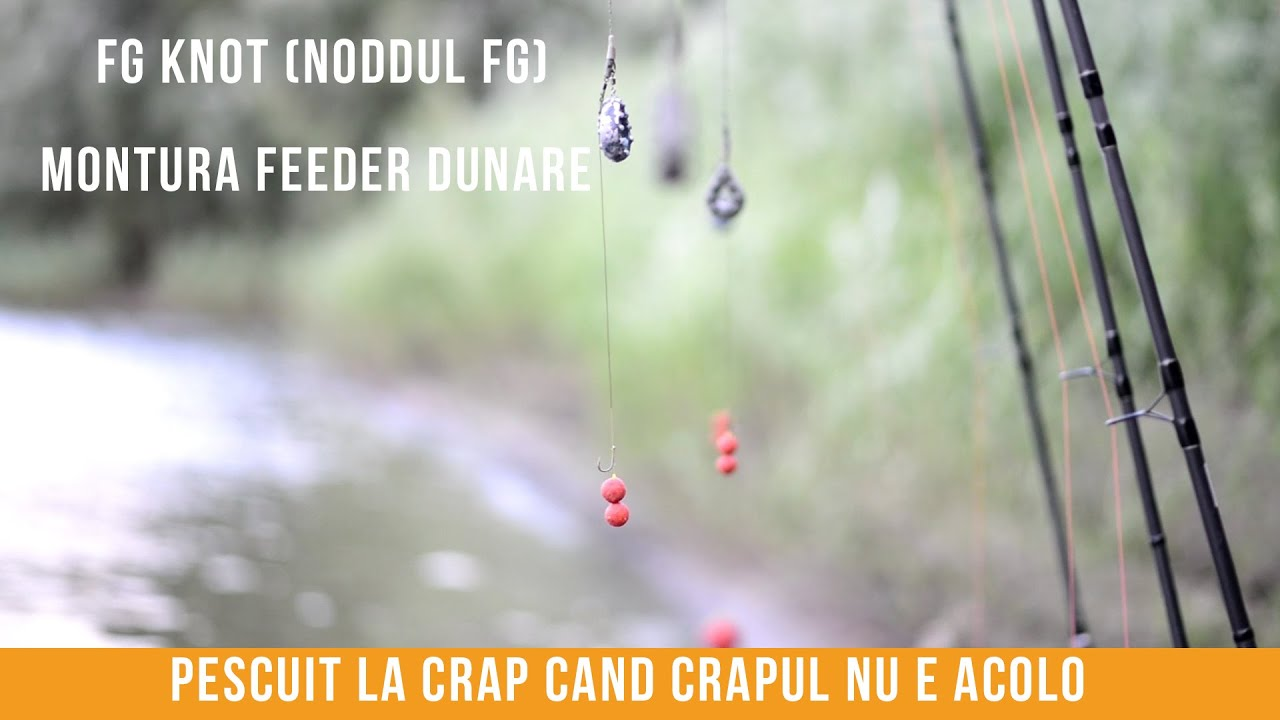 Download Pescuit la Dunare - zona Braila - Orice partida are solutia ei?!