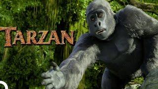 Download Tarzan - Çizgi Film (Türkçe Dublaj HD) Mp3 and Videos