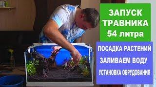 Запуск травника 54 л.  Часть 3.  Посадка растений.  Заливаем воду.  Установка оборудования.