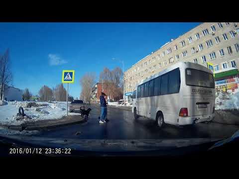 Водитель автобуса не пропускает детей на пешеходном переходе