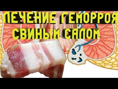 Лечение Геморроя свиным Салом | условиях | домашних | геморроя | геморрой | лечение | отзывы | женщин | мазь | гем | от