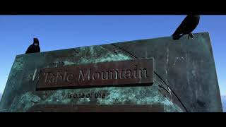 Table Mountain - Cape Town's most iconic landmark