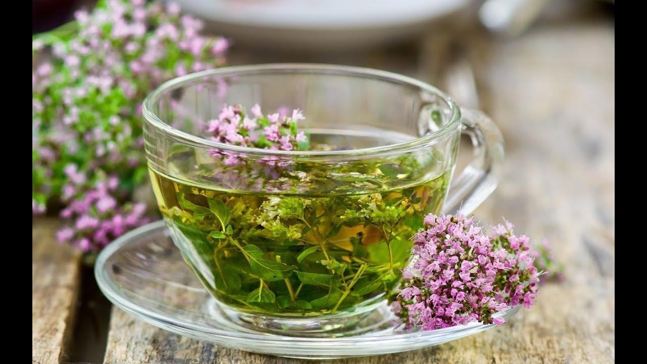Мочегонные травы для похудения: народные средства, чаи, продукты
