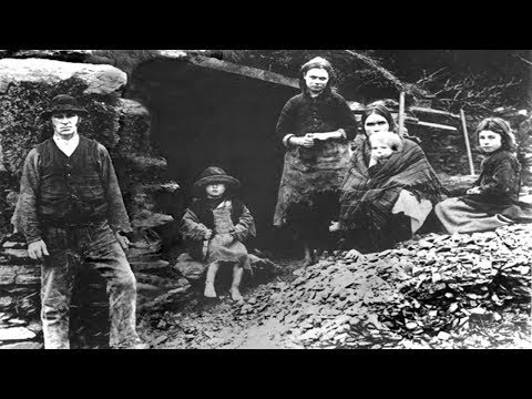 The Great Irish Famine: History of Modern Ireland - Facts, Genocide, 1847 (1997)