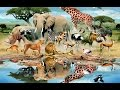 LEARN WILD ANIMALS NAMES AND SOUNDS, WITH CARTOON CHARACTER-Educational Videos for kids and toddlers