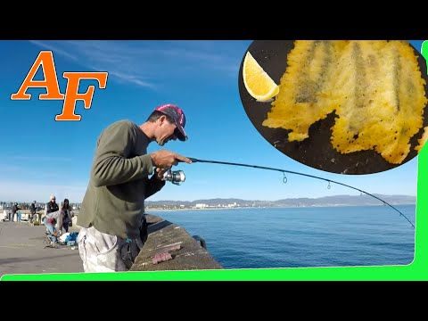 Catch and Cook Cheesy Fish Fingers Venice Beach Pier Fishing Report California Food 4 Less EP.394