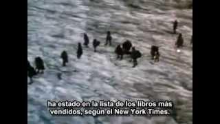 El clan del oso cavernario (película)