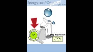Energy Out: How Much Energy You Burn