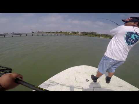 Copano Bay Fishing BLACK DRUMS