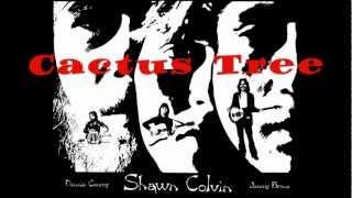 Cactus Tree - Shawn Colvin