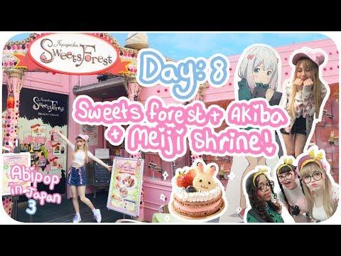 CUTE CAKES & WAIFUS!♪   Day 8 - Sweets Forest, Meiji Shrine & Akiba!   Abipop in Japan 3 - 2017 ♡