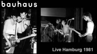 BAUHAUS - Hair of the dog (Live 1981)
