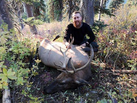 Wilderness Elk Hunt 2018