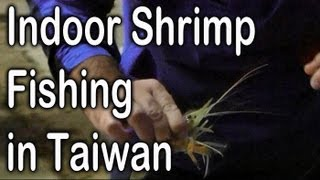 Indoor Shrimp Fishing 我想要去釣蝦