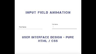 V005 : Input Field Animation - Pure HTML /CSS