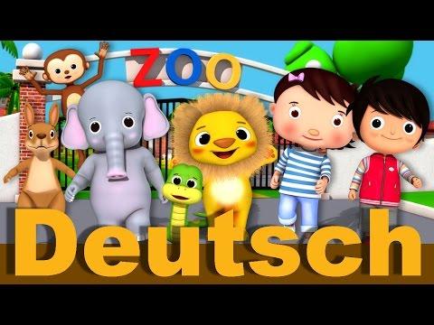 Zoo Lied   Kinderlieder   LittleBabyBum