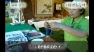 京畿道_始兴河川节[韓国]