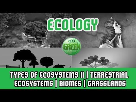 10. Ecosystem | Types of Ecosystems II | Terrestrial Ecosystems | Biomes | Grasslands | Deserts