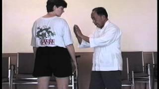 Tuishou Exercise 11 - Yangjia Michuan Taijiquan