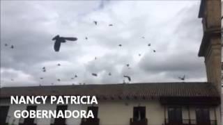 Encuentro Provincial Pacto Con Cundinamarca en Facatativa - Nancy Patricia Gobernadora