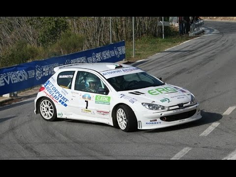 best of rally 2015 kit car peugeot 206 s1600 show pure sound 2000