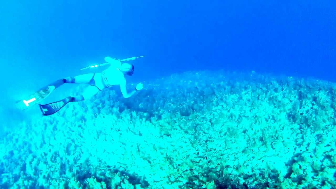 supervised freedive to 20 meters off side of 40 meter deep cliff