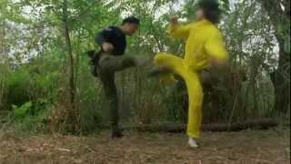 Best Of Jackie Chan (Tribute)