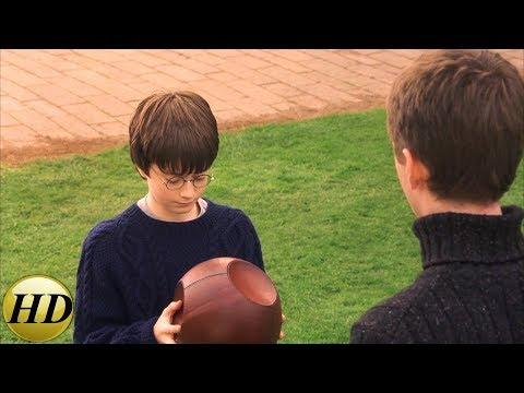 Первый урок по квиддичу. Гарри Поттер и философский камень.
