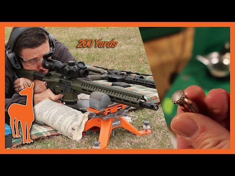 350 Legend Hornady American Whitetail Vs Ballistic Gel At 100 And 200 Yards - The Social Regressive